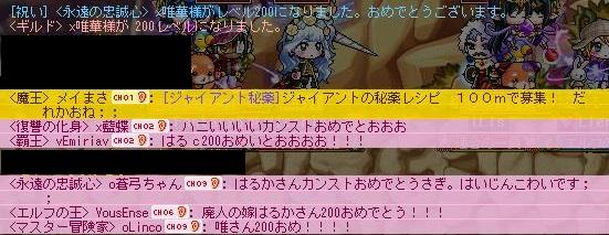 Maple120414_222055.jpg