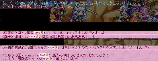 Maple120414_222055aa.jpg