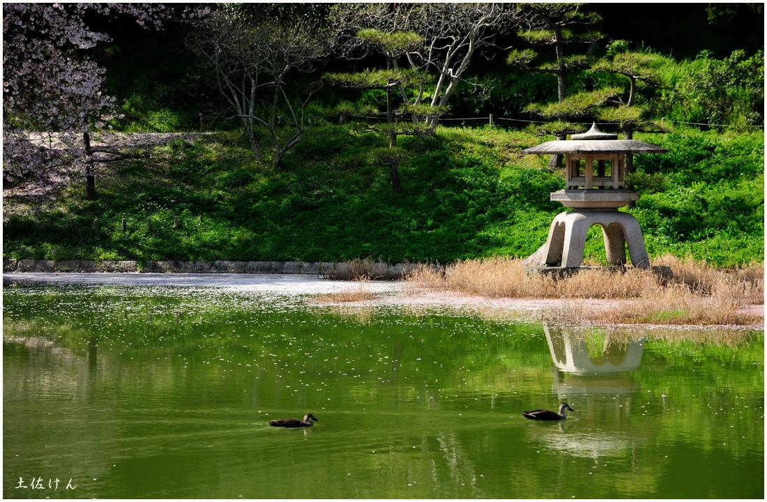 鶴見緑地4
