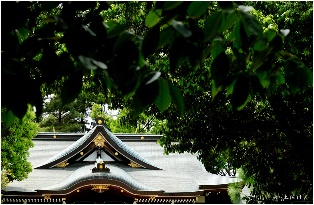 辛国神社2