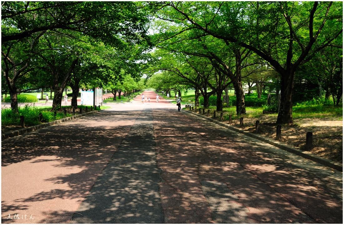 万博公園1