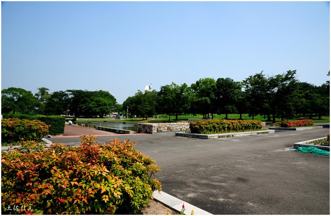万博公園5