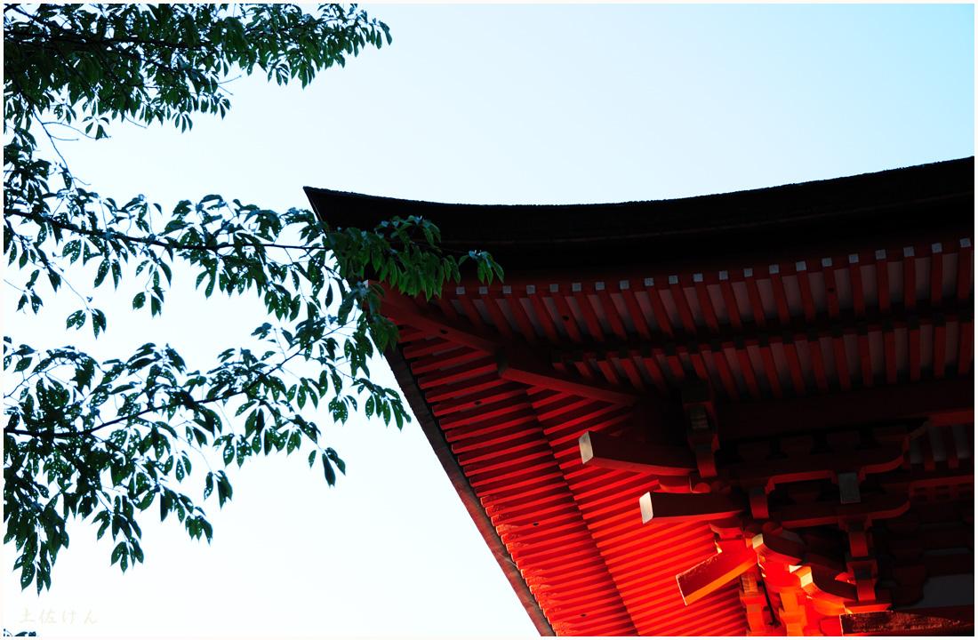 上鴨神社3