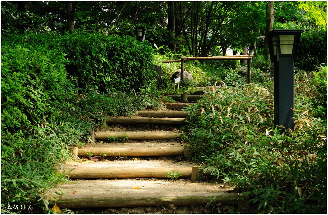 藤田邸跡公園から大阪城公園3
