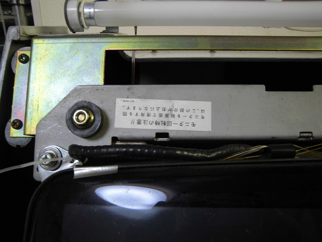 CIMG3950.jpg