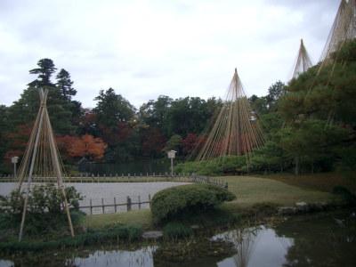 20061123.jpg